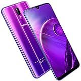 4G Cellulari Offerte 4GB 64GB/128GB 1.5GHz 6.3' HD Waterdrop Schermo 12MP+5MP Fotocamera 3980mAh Smartphone Offerta Del Giorno Dual SIM Android 8.1 Face ID Smartphone Economici DUODUOGO S10 (Porpora)