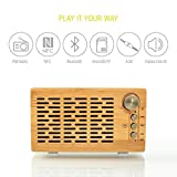 Outdoor Bluetooth Speaker DJ Roxxx Big Woody | Altoparlante Wireless Portatile | con Funzione NFC, Lettore schede MicroSD/TF per File Mp3, Radio FM e Funzione Vivavoce | in Vero Legno Bamboo